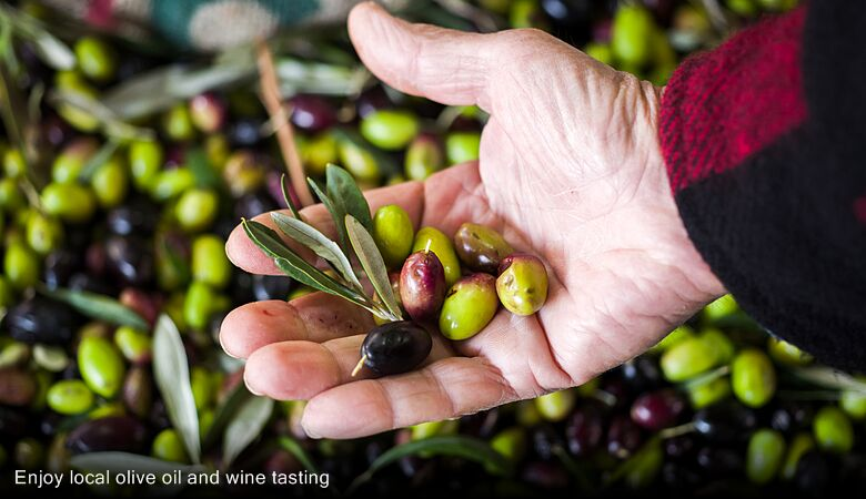 Enjoy local olive oil and wine tasting